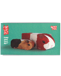 Guinea pigs | Pop up pet